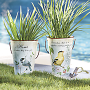 set of 2 songbird pails 31
