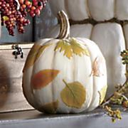 white leaves pumpkin