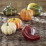 set of 6 pumpkins and gourds