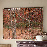 Autumn Woods Art