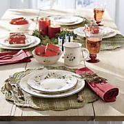 16 pc  winterberry dinnerware set by pfaltzgraff