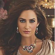 Burgundy, Gray & Clear Crystal Jewelry