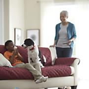 Seasons Reversible Furniture Protector