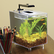 prism tabletop aquarium