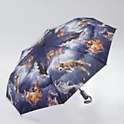 raining cats   dogs umbrella