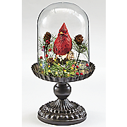 cardinal dome lamp