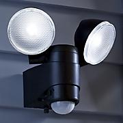 Dual-Head Security Spotlight