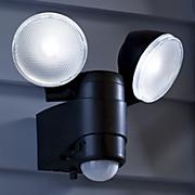 dual head security spotlight