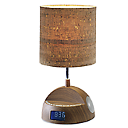 bluetooth speaker lamp with gradual wake alarm clock