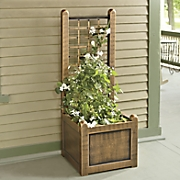 small trellis planter