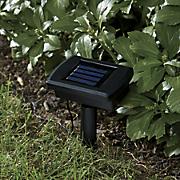 Solar Lawn Edging