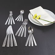 20 pc  parson flatware set by oneida