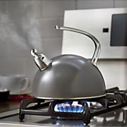 2 qt  color changing tea kettle
