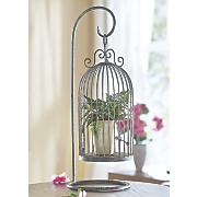 tabletop birdcage