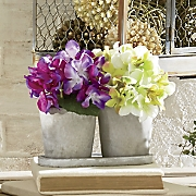 Set of 2 Hydrangea Pots