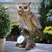 Solar Owl Spotlight