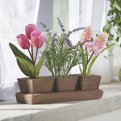 3 Potted Florals