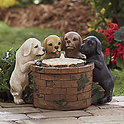 puppy party  fountain