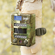 8 mp infrared trailcam by coleman