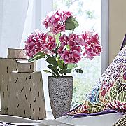 hydrangea floral stone pot