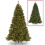 North Valley Lighted Spruce Trees