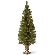 Montclair Lighted Spruce Trees