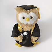 dr  hoot the graduation owl
