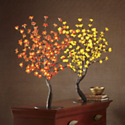 lighted bonsai tree