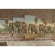 5 pc  elephant canvas wall art
