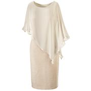 Shimmery Overlay Dress