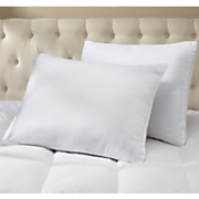 set of 2 pillow protectors by epoch hometex