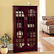 2 door media storage cabinet