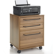 Rolling Mobile File Cabinet