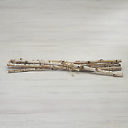 birch branch bundle