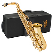 alto sax with case