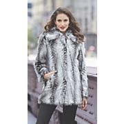 stassi coat 67