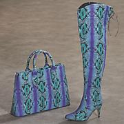 pasadena bag and thigh high boot