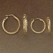 2 pair twist hoop earring set