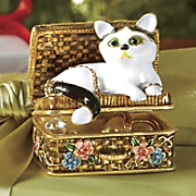 cat in jewelry box