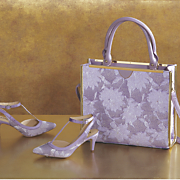 rienza bag and t strap shoe