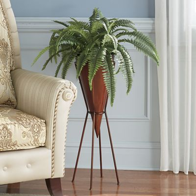 Parlor Fern with Stand