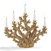 Gold Coral Candelabra