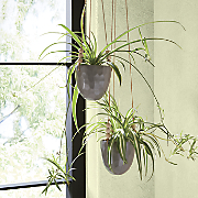 gray hanging pot
