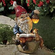 solar reading gnome