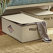 set of 2 closet storage boxes