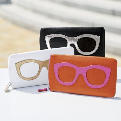 Eyeglass Case with Glass Frame