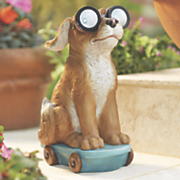 solar dog on skateboard