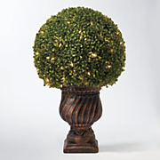 27 quot  boxwood round shrub
