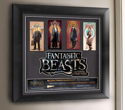 Fantastic Beasts Framed Movie Art