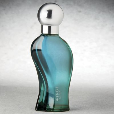 Wings For Men by Giorgio Beverly Hills
